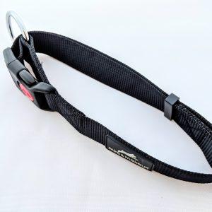 image of a black dog collar