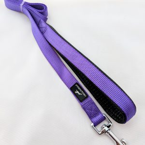 image of a purple dog lead