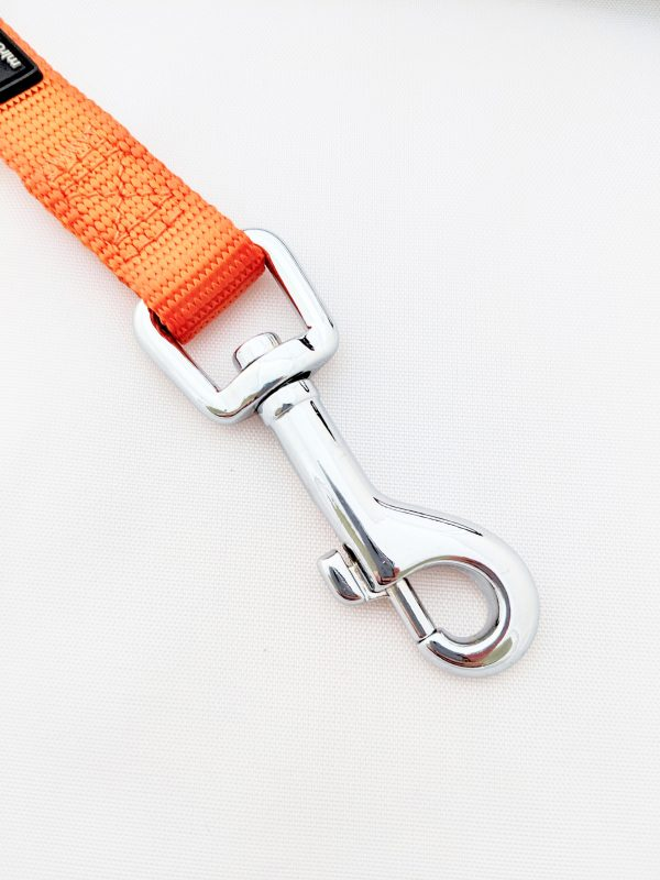 image of an orange dog lead clip