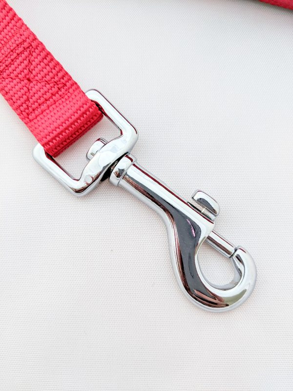 image of a red dog lead clip