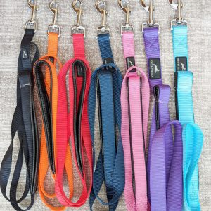 Nylon Dog Lead – Miro & Makauri