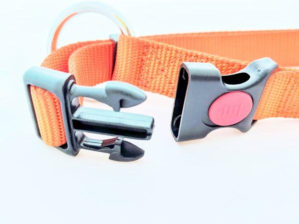 image of an orange dog collar clasp