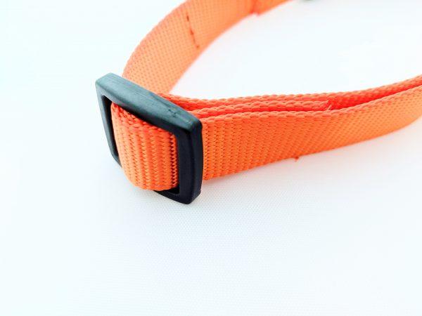 adjustable orange dog collar