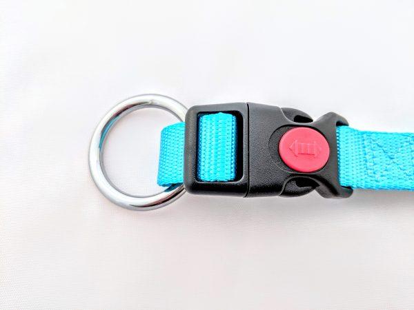 turquoise dog collar clip