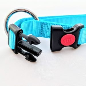 Adjustable Nylon Dog Collar – Miro & Makauri