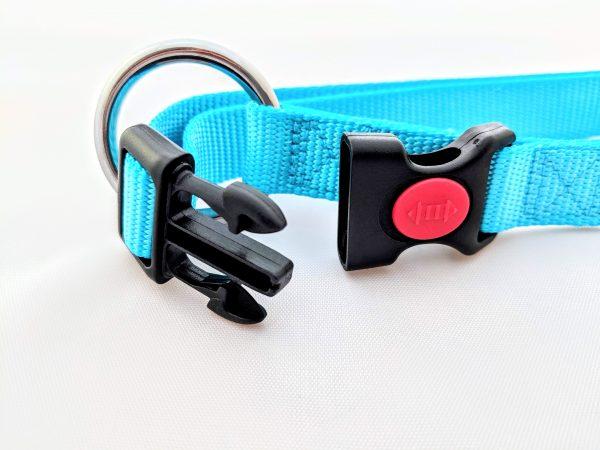 turquoise dog collar clasp