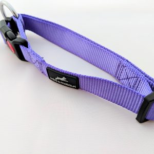 image of a purple dog lead