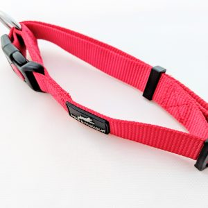 image of a red dog collar