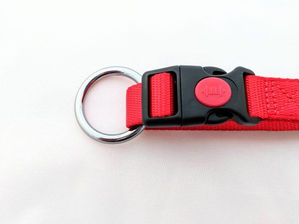 red dog collar clip
