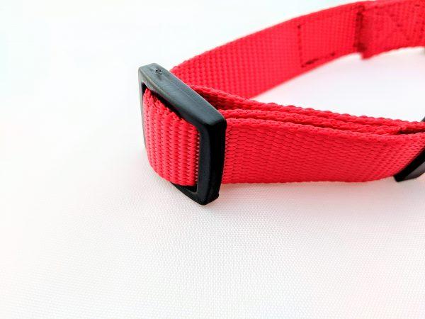 red dog collar image