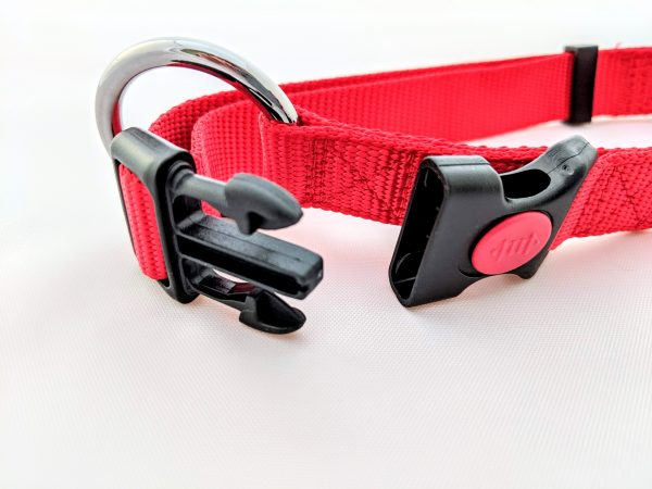 red dog collar clasp