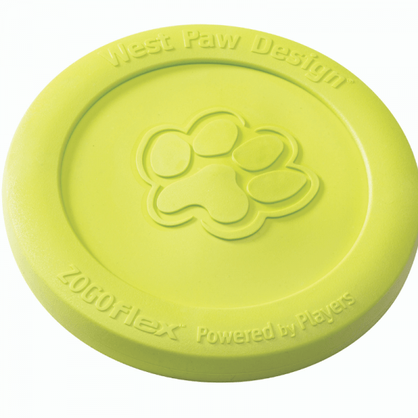 green flying dog toy for fetch
