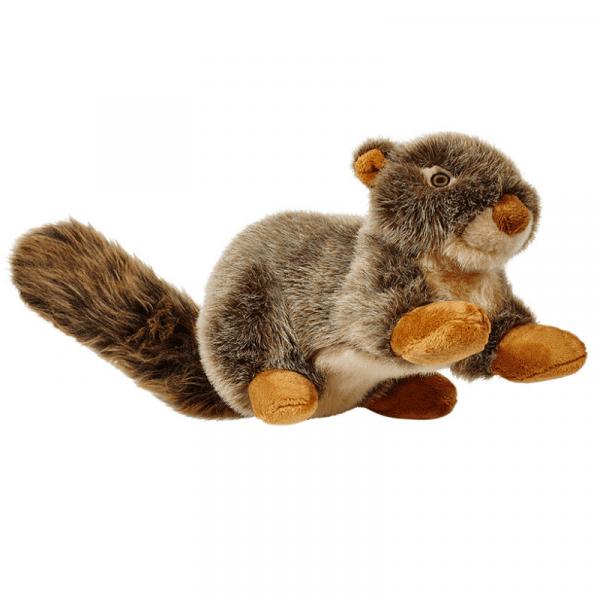 nuts squirrel plush dog toy