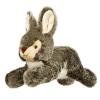 squeaky rabbit dog toy