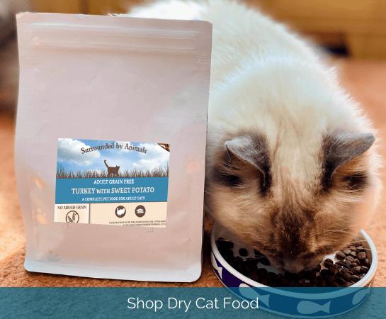 shop dry cat food