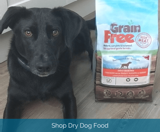 shop dry dog food
