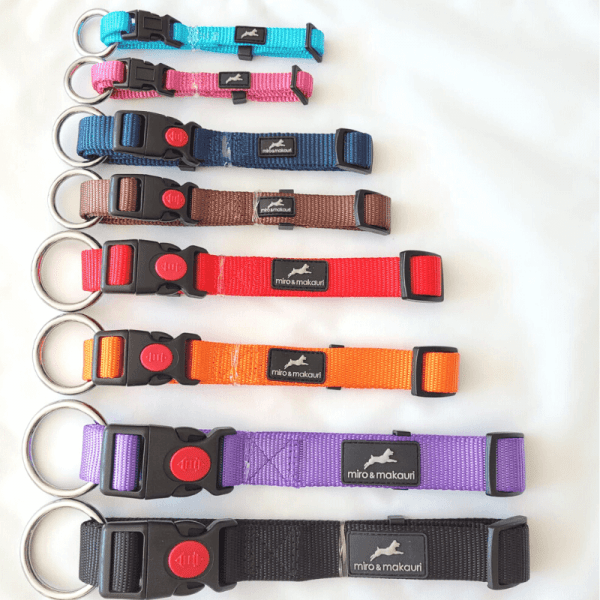all sizes and colours available in our dog collar range from miro & makauri