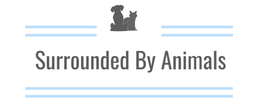 surrounded by animals logo