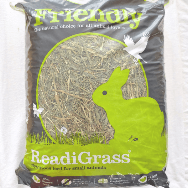 friendly readigrass for small animals