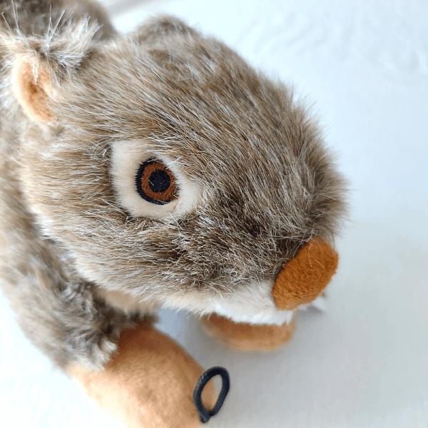 Nuts Squirrel Dog Toy – Fluff & Tuff
