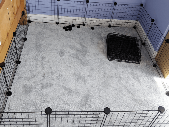 the outside of a c & c cage for guinea pigs