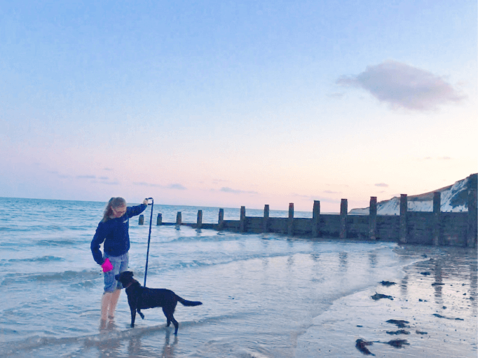 an owner and a dog paddling in the sea at sunset