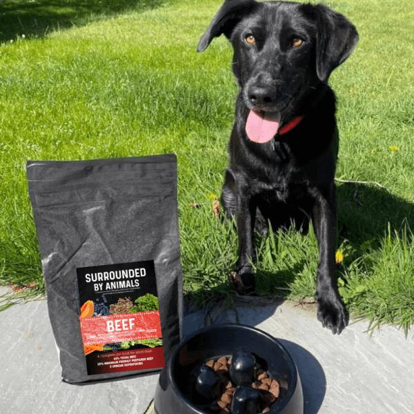 Superfood 65 Dog Food – Angus Beef
